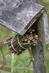 Трубочки для пчел