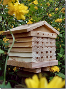 Дом для пчел