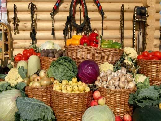 Срок хранения овощей