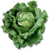 Земледелие, выращивание овощей