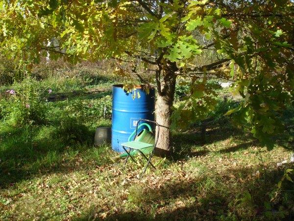 Жизнь в деревне,зеленый блог