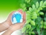 Зеленый блог, видео