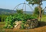 огород, жизнь в деревне