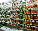 Всхожесть семян, семена покупка, зеленый блог