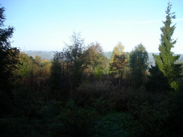 зеленый блог, фото в деревне