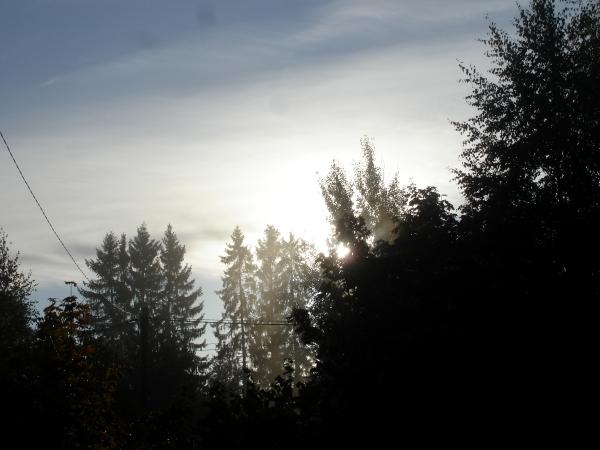 фото в деревне, зеленый блог