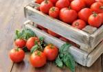 хранение плодов. огород, зеленый блог