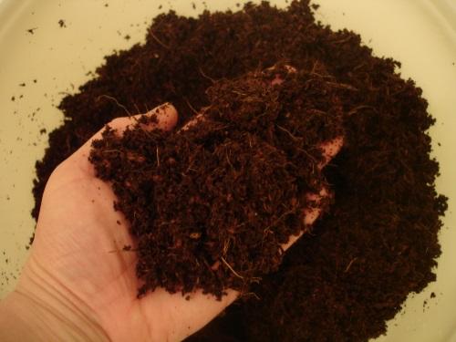 Как сеять семена в кокосовый субстрат